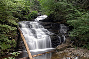 Mohican Prints - Mohican Falls in Summer Splendor Print by Gene Walls