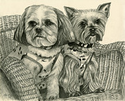 Yorkie Drawings - Molly and Angel by Lena Auxier