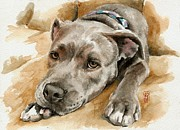 Bull Terrier Paintings - Molly by Debra Jones