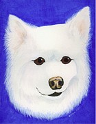 Lori Ziemba Prints - Molly the American Eskimo Dog Print by Lori Ziemba