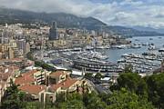 Allen Sheffield - Monaco Harbor