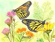Catherine Basten - Monarch Butterflies