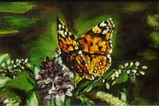 Oi Prints - Monarch Butterfly Print by Jennifer Calhoun