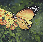 Yellow Flowers Painting Prints - Monarch Butterfly Print by Natasha Denger