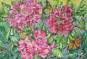 Detailed Originals - Monarchs by Barbara Timberman