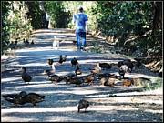 Leslie Hunziker - Monday Creek Walk