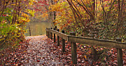 Fall River Scenes Posters - Monets Trail Poster by Debra and Dave Vanderlaan