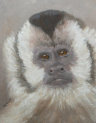 Saheed Framed Prints - Monkey Gaze Framed Print by Margaret Saheed