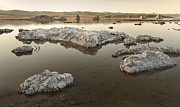 California Art - Mono Lake by Francesco Emanuele Carucci
