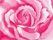 Monochromatic Paintings - Monochromatic Rose by Marsha Elliott