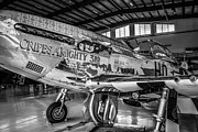 P51 Mustang Originals - Monochrome Mustang by Chris Smith