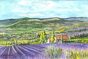 Lavender Fields Drawings Framed Prints - Montagne de Lure en Provence Framed Print by Carol Wisniewski