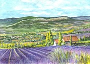 Farms Drawings Framed Prints - Montagne de Lure in Provence France Framed Print by Carol Wisniewski