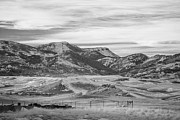 Bilings Prints - Montana Country Print by Paul Bartoszek