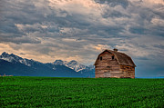 Nikon Photos - Montana by Glenn Barclay