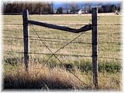 Misty Ann Brewer - Montana Horse Fencing