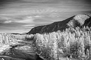 Missoula Prints - Montana Mountains Print by Paul Bartoszek