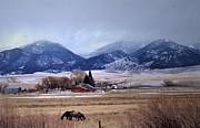 Kae Cheatham - Montana Ranch - 1-w-texture