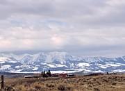 Kae Cheatham - Montana Ranch 2