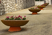 Italian Pottery Prints - Montecassino Flower Pots Print by William Chizek