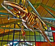 Gregory Dyer - Monterey Bay Aquarium - Whale Skeleton - 02
