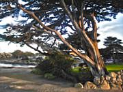 Gregory Dyer - Monterey California - 07