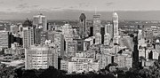 Montreal Buildings Prints - Montreal City skyline in Black and White Print by Pierre Leclerc