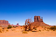Tracey Hunnewell Framed Prints - Monument Valley 2 Framed Print by Tracey Hunnewell
