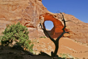 Wind Art - Monument Valley - Ear of the Wind by Christine Till