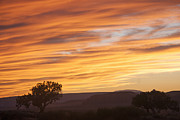 Steve Ohlsen - Monument Valley Sunset
