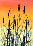 Reeds Painting Originals - Mood in the Reeds by Ruth Bodycott