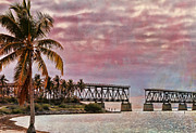 Florida Keys Photos - Mood of the Keys by Deborah Benoit