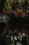 Reflections In River Prints - Moody Azalea and white bridge Print by Mark Serfass