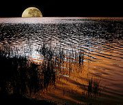 Reflections Digital Art Prints - Moon catching a glimpse of Sunset Print by Kaye Menner