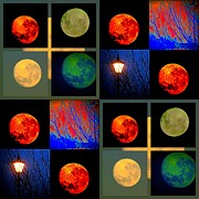 Joyce Woodhouse Posters - Moon In Colour Poster by Joyce Woodhouse