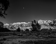 Roland Peachie - Moon Over Lone Pine