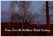 Rita Brown - Moon Over the Waltham...
