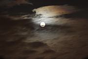 Karen Adams Metal Prints - Moon Shine 2 Metal Print by Karen Adams