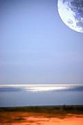 Judy Hall-Folde - Moon Vision