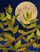 Pods Paintings - Moondance by Lauren Everett Finn