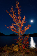 Moonglow Prints - Moonglow on Eagle Lake Print by Michael Blanchette