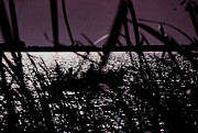 Boaters Photo Prints - Moonlight Fisherman Print by Christy Usilton