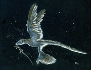 Julius Csotonyi - Moonlight hunt -...
