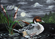 Moom Framed Prints - Moonlight Mallard Framed Print by Kathy J Snow