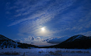 Mount Rose Posters - Moonlight over Tahoe Meadows Poster by Dianne Phelps