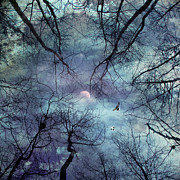 Forest Digital Art - Moonlight by Stylianos Kleanthous