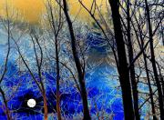 Wintry Digital Art Prints - Moonlit Frosty Limbs Print by Will Borden