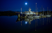 Coos Framed Prints - Moonlite Bay Framed Print by Patricia  Davidson