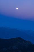 Jamie Pham - Moonrise