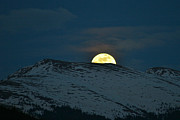 Bob Berwyn Art - Moonrise over Independence Mountain by Bob Berwyn
